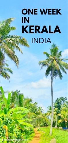 Travel India for one week in India in south asia with best things to do in Kerala itinerary. Best places to visit when backpacking India with trip planning tips. outdoor travel destinations on a budget with culture and beautiful places in incredible india Kochi, Backpacking India, Backpacking South America, Munnar, Kerala Travel, India Travel, Paris Travel, Kerala India, India Asia