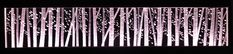 19. BIRCH FOREST Glass Engraving by Alison Kinnaird Engraving Tools, Glass Engraving, Birch Forest, Cool Words, Blinds, Stone, Inspiration, Art, Biblical Inspiration