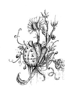 Unknown form of life. Ballpont pen drawing.