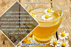 Chamomile tea great for hair split ends !!!  #health #healthyliving #detox #glow #haircare #splitends #hair #exercise #hairfall #dandruff #dermatology #stayyoung #healthtips #healthcare #oldage #youth #greentea #chamomiletea #herbaltea #foodismedicine #antioxidants #drinkup