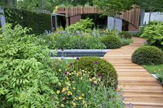 Chelsea flower show 2015 – in pictures Green Garden, Shade Garden, Garden Paths, Garden Bridge, Garden Show, Home And Garden, Chelsea Flower Show, Contemporary Landscape, Water Garden