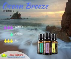 I could totally go for a beach day today. Who's with me?!?! #essentialoils #diffuserblend