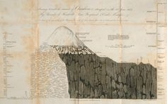 Chimborazo, A sketch of the Geography of the Plants