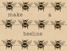 "Make a beeline for something / somebody - to go straight towards something/somebody as quickly as you can ""As soon as we arrived at the party we made a beeline for the food."" Idioms on Behance by Elizabeth Parkin"