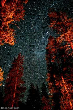campfire meteor shower. I'd like to have a night like this.