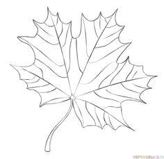 Comment dessiner une feuille d'érable | étape par étape tutoriels de dessin