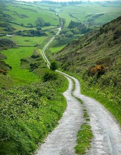 The road to Cork