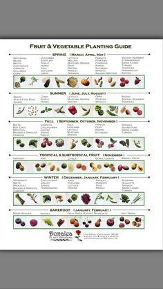 Gemüsegarten kalender  Pin von thomas wiele auf super Ideen   Pinterest   Nachrichten