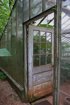 vintage greenhouse | Antique greenhouse wooden entry door | Flickr - Photo Sharing!