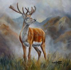 Prince Of The Glen - SOLD Red Deer Stag in Scotland oil painting -- Anne Zoutsos