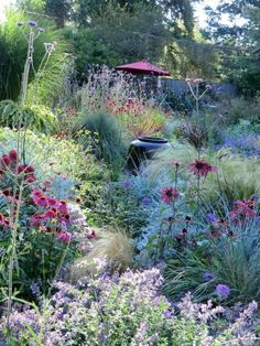 Perennial garden grasses in prairie style Would be on a slope or on a hill . - Perennial garden grasses in prairie style Would stand on a slope or on a hill - Modern Garden Design, Prairie Garden, Small Cottage Garden Ideas, Backyard Landscaping, Garden Shrubs, Perennial Garden, Garden Planning, Cottage Garden, Perfect Garden