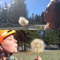 Make a wish! #motherdaughtermoments #tahoebikeride