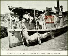 alligators in the Pasig River... where are they now?