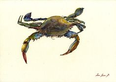 Blue Crab .     Frame and mat not included, just the print. A reproduction of my original painting.  These high quality prints are printed with a fine art printing process on a 250 g/m2 high quality thick paper.  All prints included a white border (approximately 0.2 in. / 3 mm on all sides) to allow for framing. Print will come signed and dated by the Artist and packed in a clear cello sleeve with cardboard to avoid bending in transit.  Have an amazing day! Juan Bosco - San Martin A...