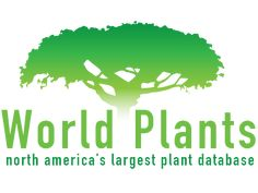 World Plants -  Our Blog is changing. In the past we had a widget on the left side of the Blog that provided access to Canada Plant Website. That website has disappeared and our blog modified to provide access to World Plant Website. Enter the website by various plant categories such as Annual Perennial Woody Bulbs and search for your plant based on common name or botanical name. If you are looking to identify a plant enter various plant features and conduct a search. In addition to… Canada 150, Common Names, Large Plants, Perennials, Plant Based, North America, The Past, Side Bar, Presentation