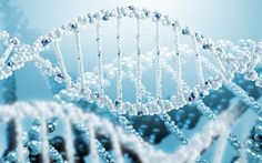 DNA wallpaper : Find best latest DNA wallpaper in HD for your PC desktop background and mobile phones.
