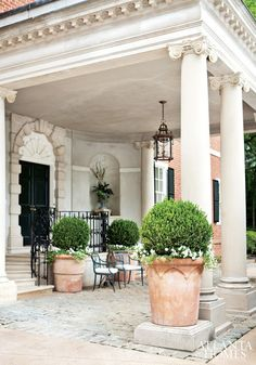 Sculpted boxwoods in planters and urns