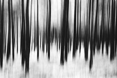Sebastian Erras Photography - Fine Art