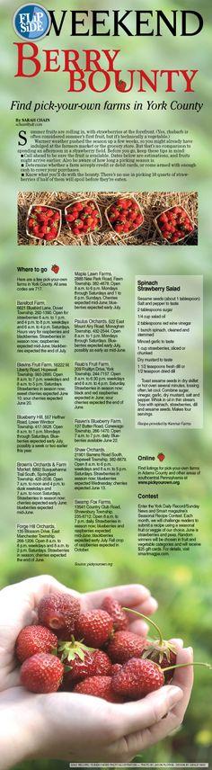 6/2/12: FlipSide Weekend #berry #food #yorkpa #summer