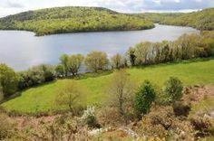 Tapi au creux des collines, le plus grand lac de Bretagne s'étire de tout son long dans la vallée du Blavet. Il présente à chaque méandre une facette différente de sa personnalité. Hospitalier pour les promenades et baignades en famille, il peut également être le parfait terrain de jeu pour les amateurs d'escalades, de ski-nautique et de randonnée sportive.