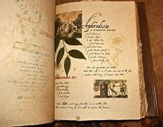 """The original """"Practical Magic"""" spellbook. (Probably one of several 'original' copies). Lots of other Books of Shadow in this October Farm blog post."""