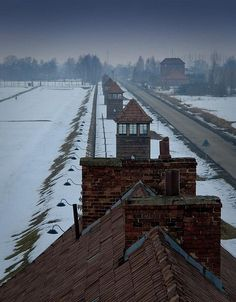 Camp de Birkenau/Pologne