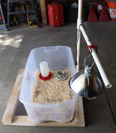 Starter brooder easy to find supplies, inexpensive