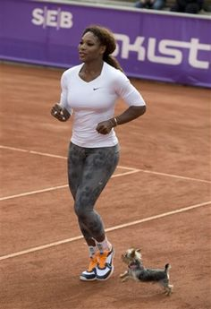 US tennis player Serena Williams warms up with her Yorkshire terrier Chip during a training session, prior to her participation in the Swedish Open Tennis tournament, in Bastad, Sweden, July 14, 2013. (AP Photo/Scanipx Sweden/Peter Widing)