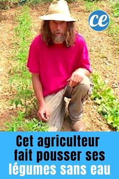 Pascal Poot, Culture Tomate, Gardening, Modern, Inspiration, Garden, Organic Gardening, Recycled Garden, Small Vegetable Gardens