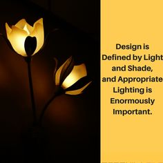 Design is defined by light and shade and appropriate lighting is enormously important. #DesignLandscape #LightingDoctor #LandscapeLighting www.lightingdoctor.ca