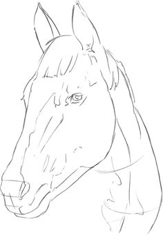 HORSE 1 For this horse portrait, I first establish the structure and angle of the head and neck with long strokes. I mark several planes with horizontal strokes, setting … - Selection from Drawing: Pets [Book] Dark Art Drawings, Horse Drawings, Pencil Art Drawings, Art Drawings Sketches, Animal Drawings, Horse Face Drawing, Horse Drawing Tutorial, Horse Sketch, Horse Artwork