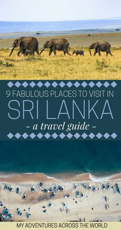 The Nicest Places To Visit In Sri Lanka Travel tips 2019 White beaches, elephants, national parks and cities: discover 9 fabulous (touristy and off-the-beaten path) places to visit in Sri Lanka! Beautiful Places To Visit, Cool Places To Visit, Places To Travel, Places To Go, Holiday Destinations, Travel Destinations, Travel Tips, Travel Guides, Travel Plan
