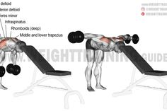 Head-supported bent-over dumbbell lateral raise exercise