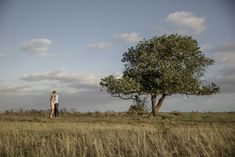 Couple shoot photography tree field romantic Couple Shoot, Couple Photography, Country Roads, Romantic, Couples, Wedding, Instagram, Valentines Day Weddings, Couple