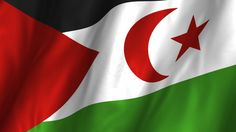 Western Sahara Flag Waiving