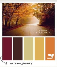 These are October wedding color suggestions..... This would look beautiful at my vineyard wedding! How do I love planning something that scares the crap out of me?