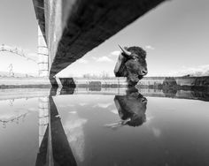Nat'l. Geographic Photography: Photo of the Day: Best of June   PROOF