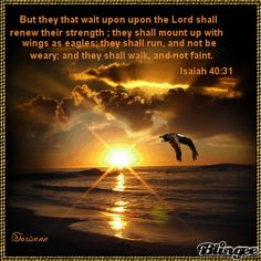 But they that wait upon the LORD shall renew their strength; they shall mount up with wings as eagles; they shall run and not be weary; and they shall walk and not faint (Isa 40:31)  shared by Lacey Lovely on Google+