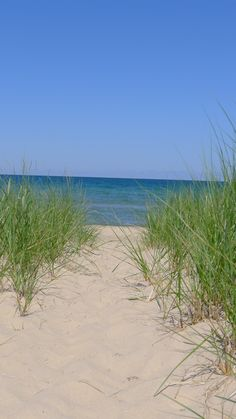 I spent many days on the beaches of Lake Michigan as a kid and still love to visit it today as an adult!