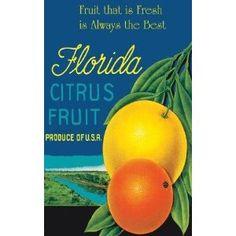 Florida citrus fruit ad