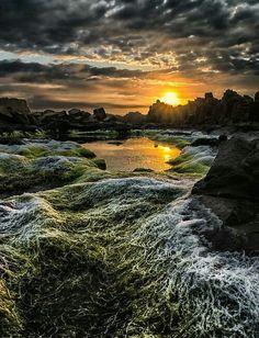 beach sunrise - Kiama, Australia, Paul Emmings Photography on Beautiful World, Beautiful Images, Paraiso Natural, Beautiful Sunrise, Nature Pictures, Ciel, Amazing Nature, Pretty Pictures, Beautiful Landscapes