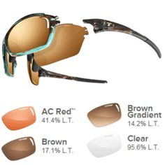 Tifosi Launch S.F. AC Red™/Brown/Brown Gradient/Clear Lens Sunglasses - Blue Tortoise