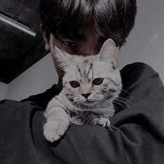 Cat anda Boy Cute