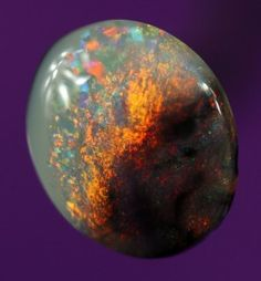 1.3ct Black opal. Visit our website to see Over 600 solid opals on display. Buy Australian Black opals, Milk Opals, Crystal Opal, Boulder Opals. Buy any quantity. Bulk purchases welcome.