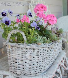Spring planter...
