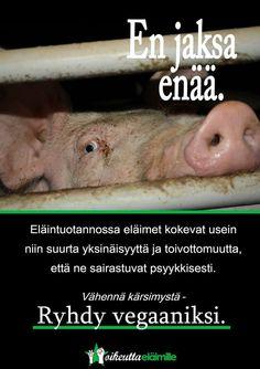 Lue lisää eläinten tunteista ja tietoisuudesta: www.oikeuttaelaimille.net/elainoikeusajattelu/elaintieteellinen-nakokulma