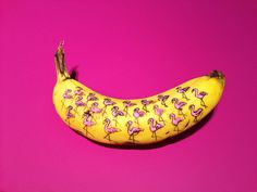 marta grossi inscribes onto temporary canvas for banana graffiti