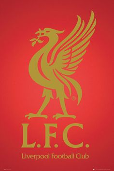 like this for the boys room, paint back wall red and then the liver bird in gold