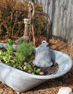 Old tub turned into a herb garden