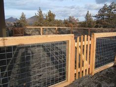 New Ideas Backyard Dog Area Diy Porches Outdoor Dog Area, Backyard Dog Area, Outdoor Fun, Outdoor Spaces, Fence Landscaping, Backyard Fences, Farm Fencing, Inexpensive Landscaping, Modern Landscaping